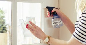 cropped image of a woman wiping window glass with tissue and holding spray bottle with vinegar written on it