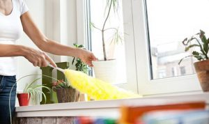 cropped picture of a person dusting a house surface