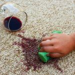 cropped picture of a person sprucing up carpet stains